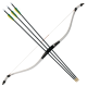 Zenith Bow and 3 Arrows Set